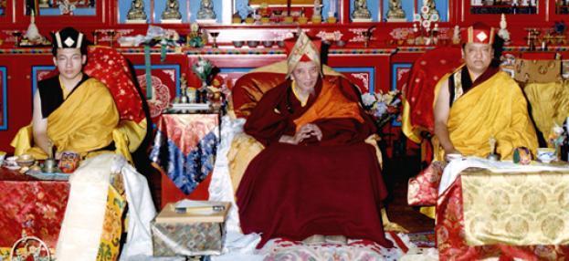 Thaye Dorje, Seine Heiligkeit der 17. Gyalwa Karmapa, Chogye Trichen Rinpoche und Shamar Rinpoche